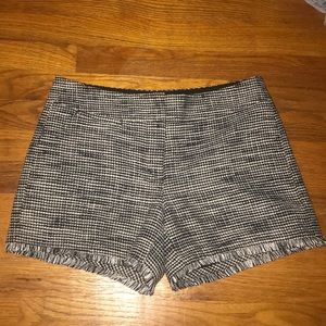 Ann Taylor Shorts - Black and white tweed shorts